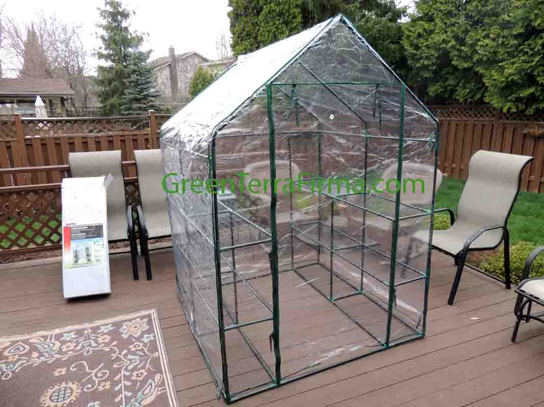 Backyard Greenhouse with Cover