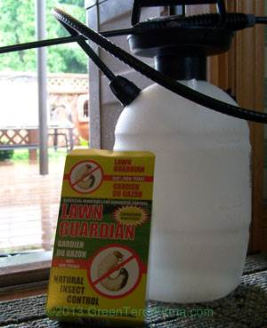 how to kill nematodes onskin using old time remedies
